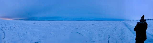 seaicepano copy